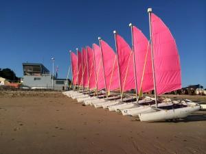 Flotte de Newcat 12 (NC 12) avant le début de la voile scolaire (LYC - Luc Yacht CLub - Ecole de voile de Luc sur mer)